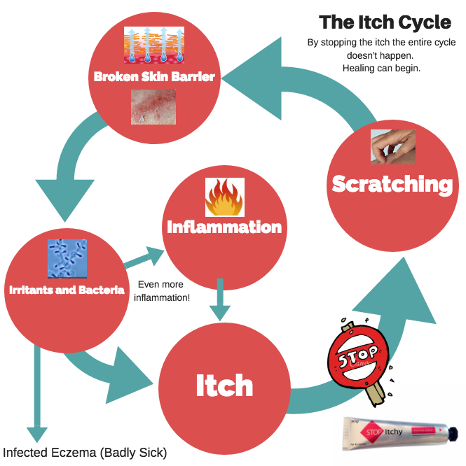 stop itchy itch cycle graphic v3